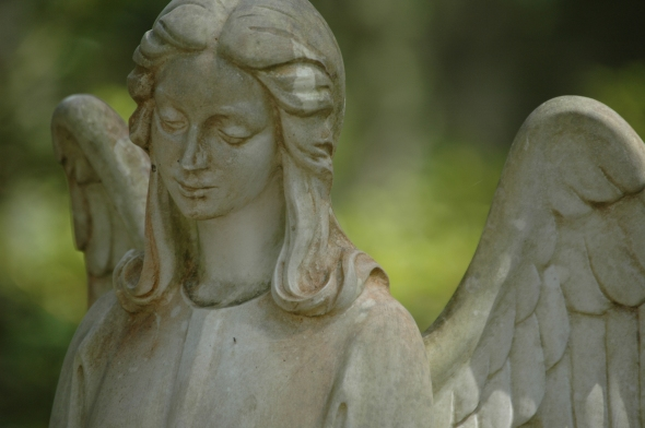 savannah cemetery angel